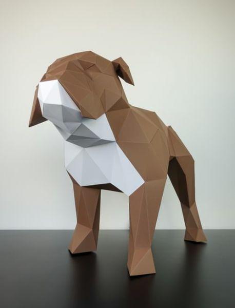 Bulldogge braun & weiß